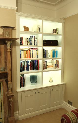 bookcase with light